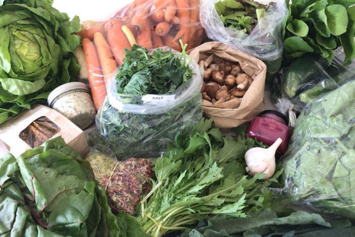 Plenty of High zinc food resource for vegetarian